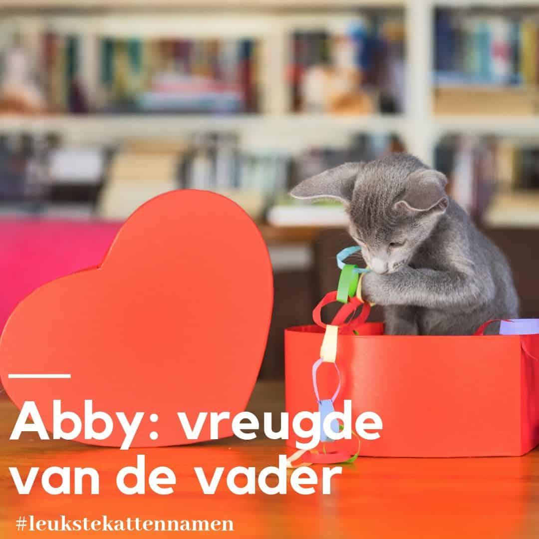 Abby als kattennaam vreugde van de vader