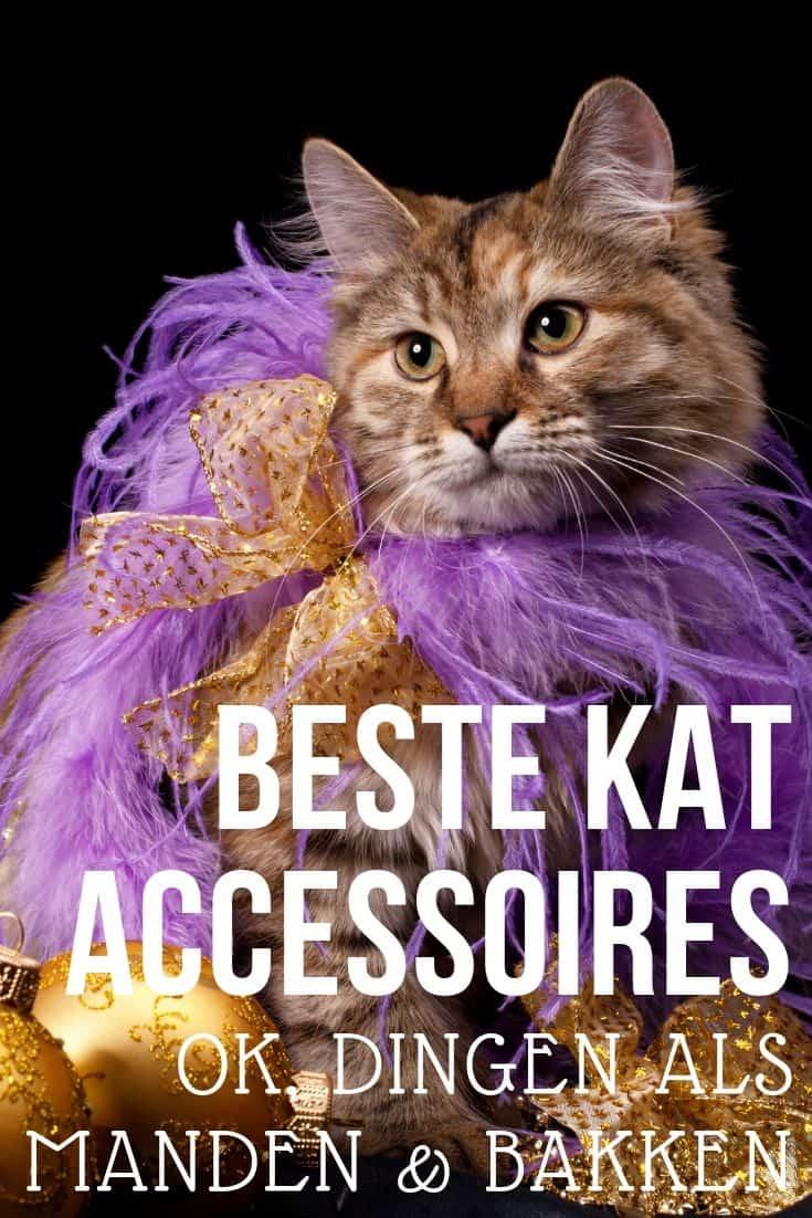 11 Beste katten accessoires | ken je de Kattenbak Robot bijvoorbeeld al?
